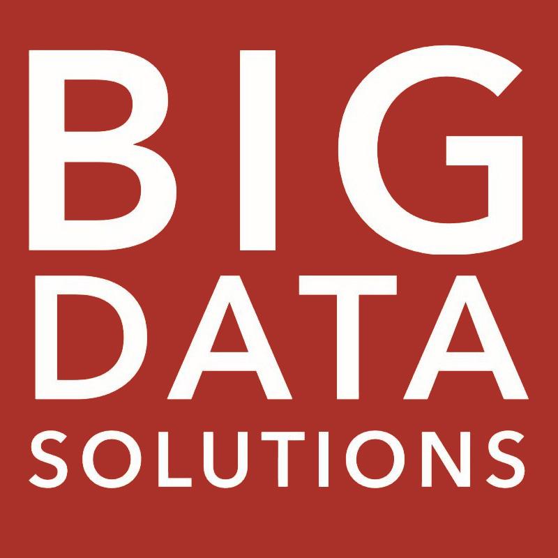 Логотип компании «Big Data Solutions»