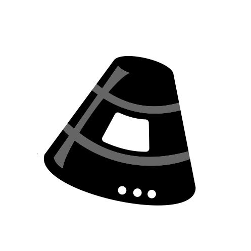 Логотип компании «Precious Payload»