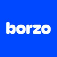 Логотип компании «Borzo»