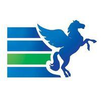 Логотип компании «PEGAS Touristik»