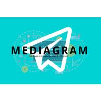 Логотип компании «Mediagram»