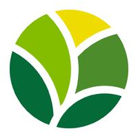 Логотип компании «Bloomio»