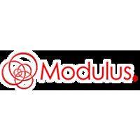 Логотип компании «Modulus»