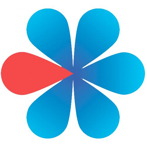 Логотип компании «TopSelection»