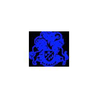 Логотип компании «IT-платформа Бизнес Молодости»