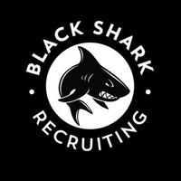 Логотип компании «Black Shark Recruiting»
