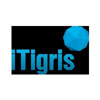Логотип компании «ITigris»