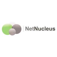 Логотип компании «NetNucleus»