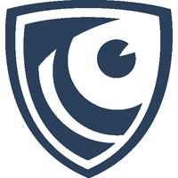 Логотип компании «Falcongaze»