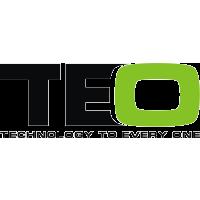 Логотип компании «TEO»