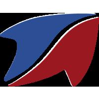 Логотип компании «Стандарт-Н»