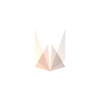 Логотип компании «Rina Solutions Inc»