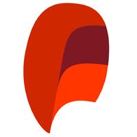 Логотип компании «Fraider»