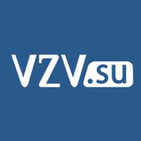 Логотип компании «VZV.su»