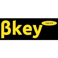 Логотип компании «Bkey project»