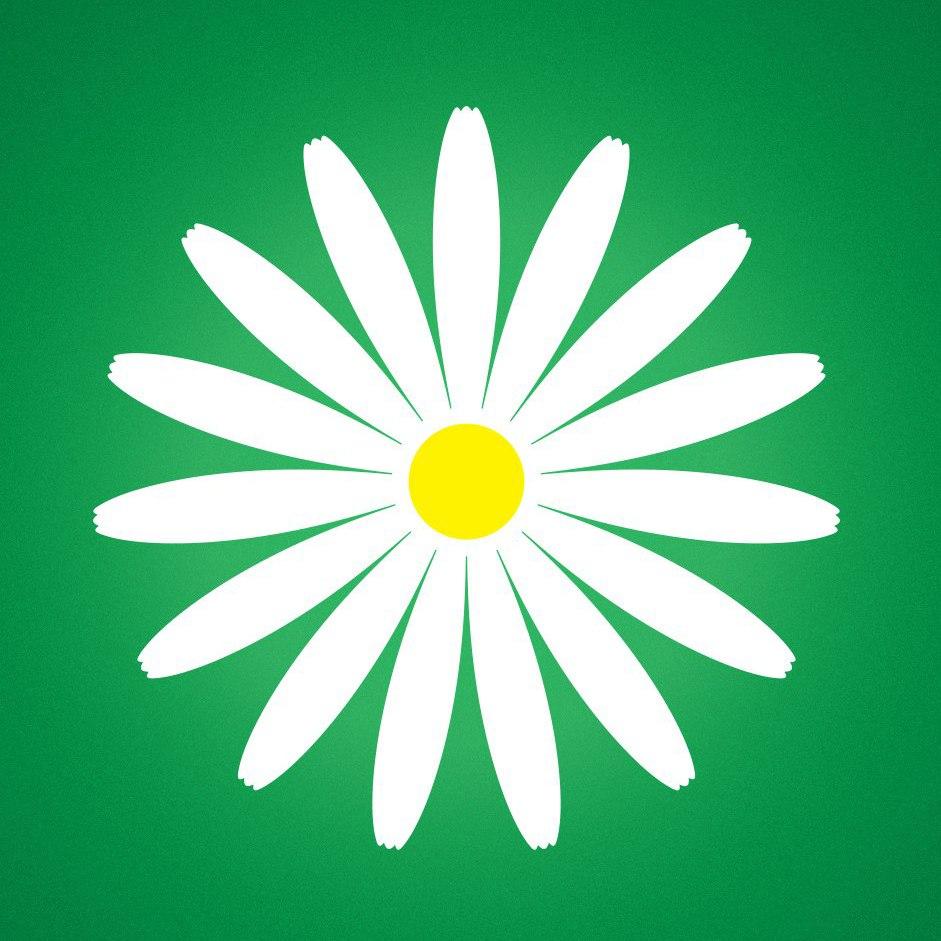 Логотип компании «Megaflowers»