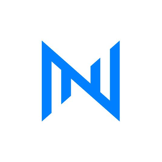 Логотип компании «Ньютон Финанс»