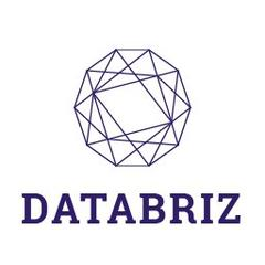 Логотип компании «Databriz»