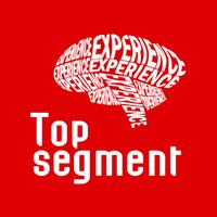 Логотип компании «TOP Segment»
