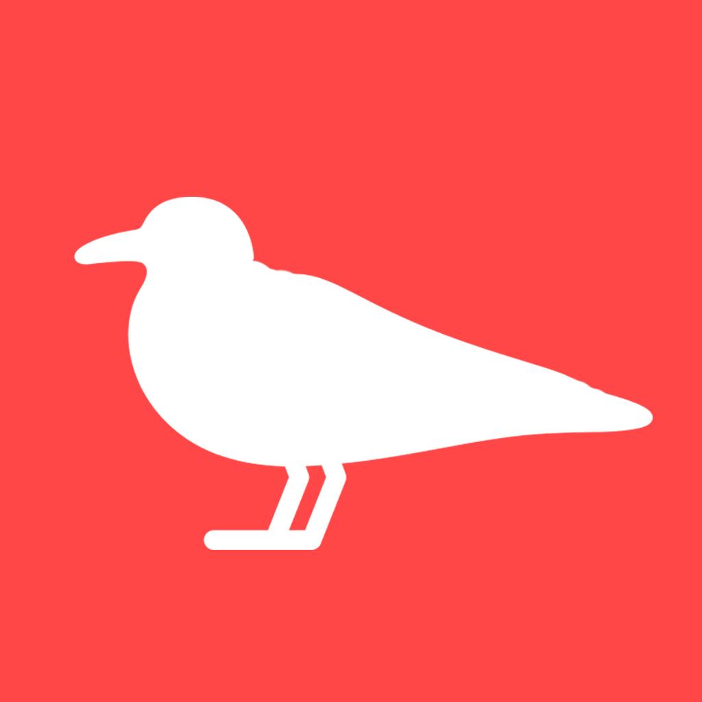 Логотип компании «PARUS AGENCY»