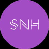 Логотип компании «SNH MeisterSoft»