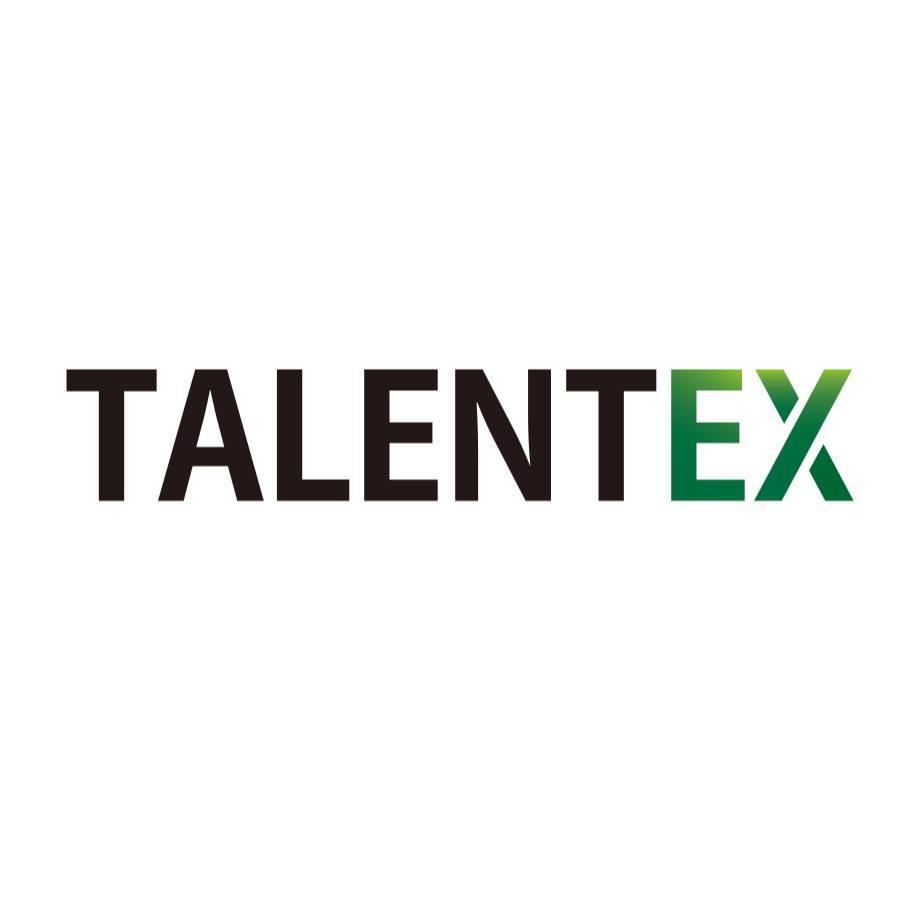 Логотип компании «TalentEx»