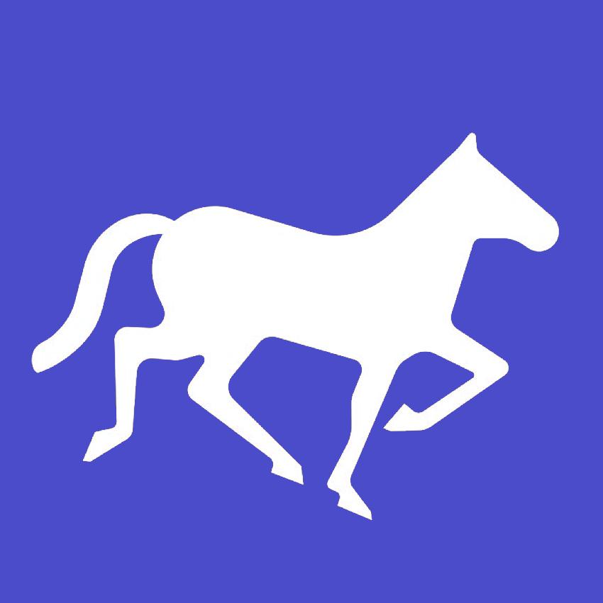 Логотип компании «Nomadic Soft»