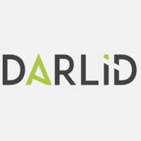 Логотип компании «DarlidSmm Lnc.»