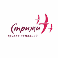 Логотип компании «ГК «Стрижи»»