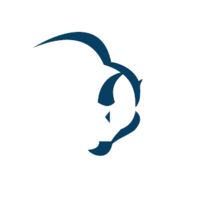 Логотип компании «Bizon-help»