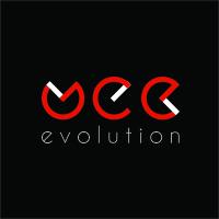 Логотип компании «WebEvolution»