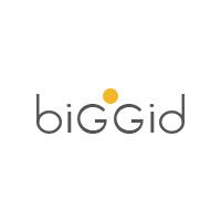 Логотип компании «biggid»