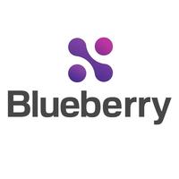 Логотип компании «Blueberry Group»