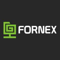 Логотип компании «Fornex»