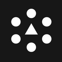 Логотип компании «RAY TRIBE»