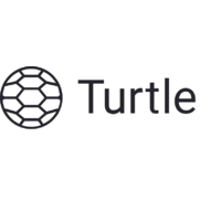 Логотип компании «Turtle»