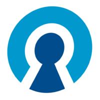 Логотип компании «PeoplePass»
