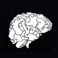 Логотип компании «Delerex»