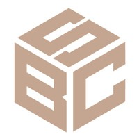 Логотип компании «Blockchain Solutions»