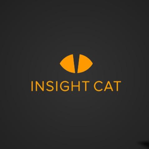 Логотип компании «InsightCat»