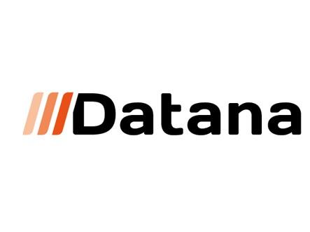 Логотип компании «Datana»