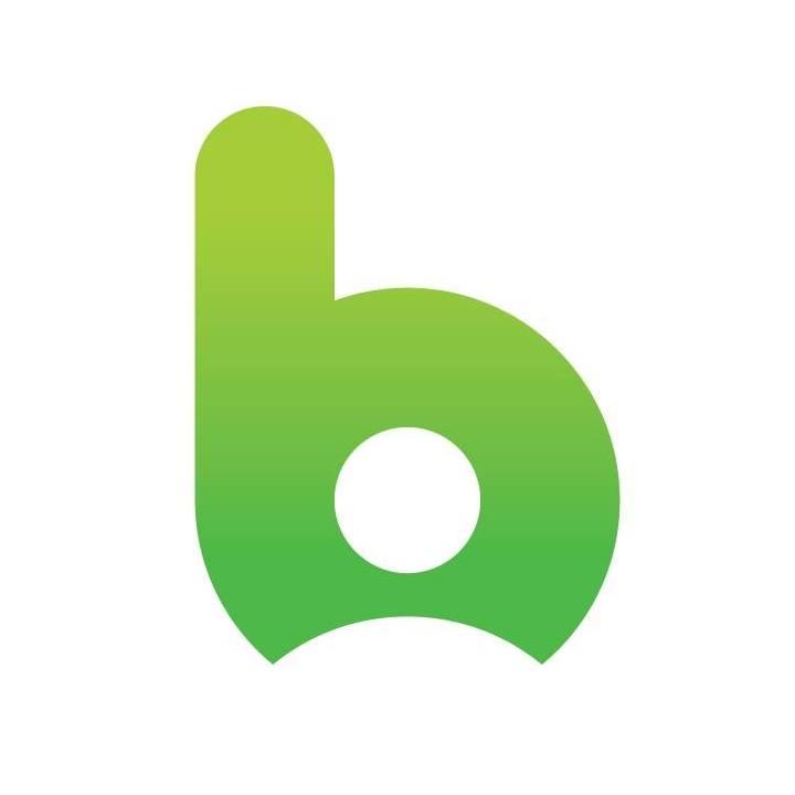 Логотип компании «BICA Services»