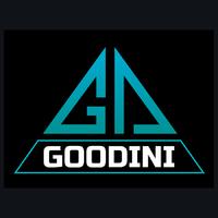 Логотип компании «Goodini»