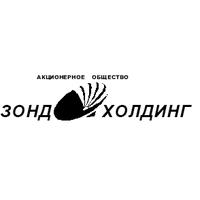 Логотип компании «Зонд-Холдинг»