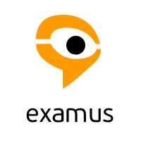 Логотип компании «Examus»