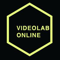 Логотип компании «Videolab.online»