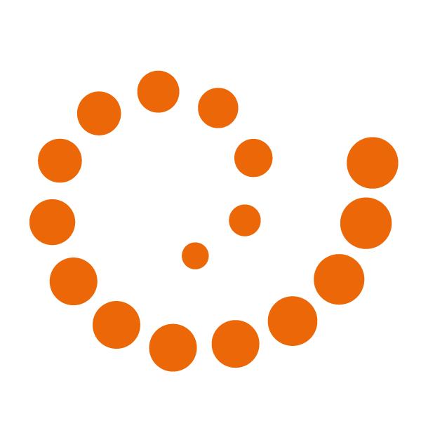 Логотип компании «Setronica»