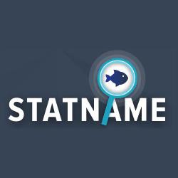 Логотип компании «Statname.net»