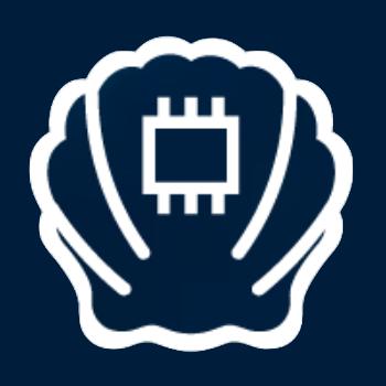 Логотип компании «BrainShells»