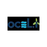 Логотип компании ««Исследования и разработки «Окели Энержи»